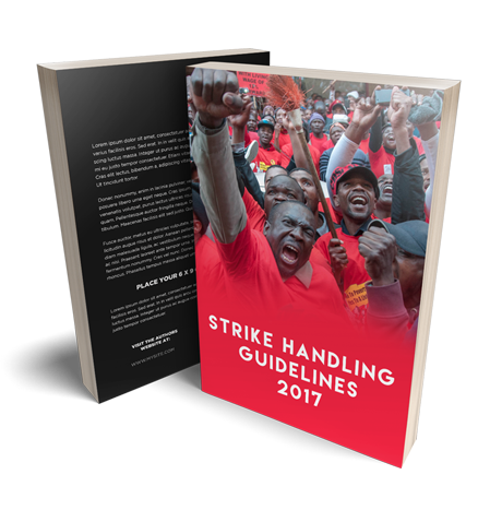 Strike Handling eBook